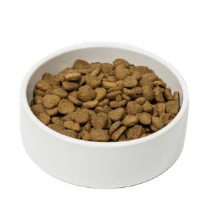 Ava puppy food reviews